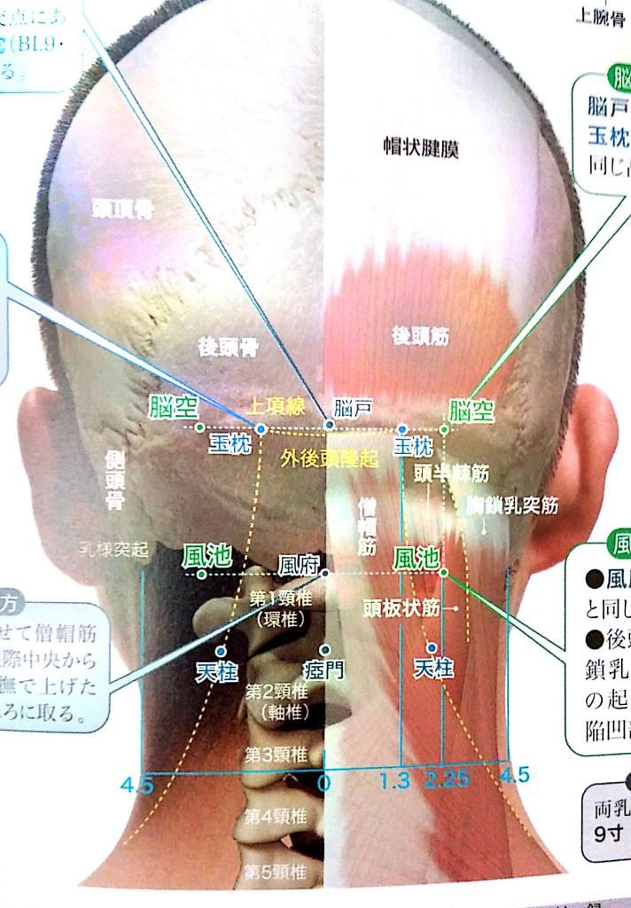 首の痛み ツボ