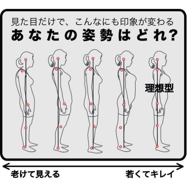 姿勢チェック説明画像