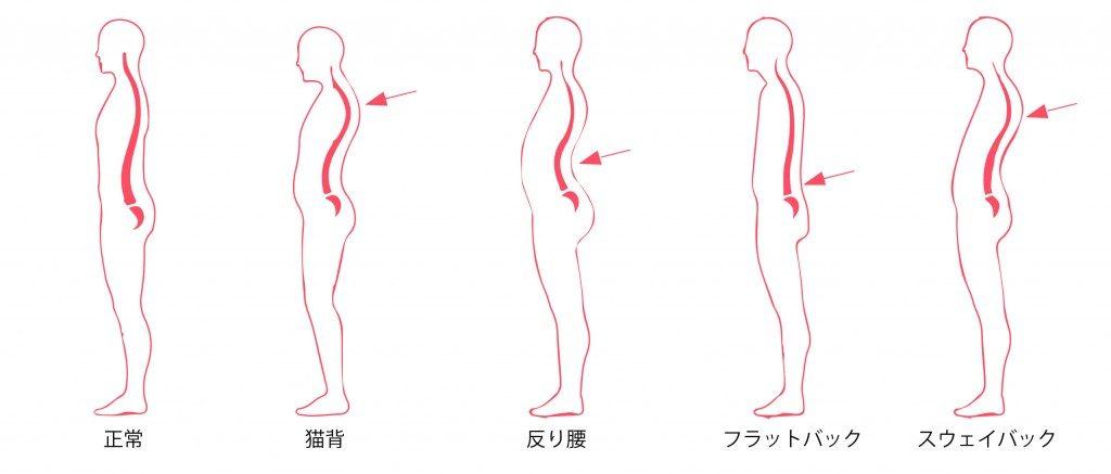 姿勢の種類の説明画像
